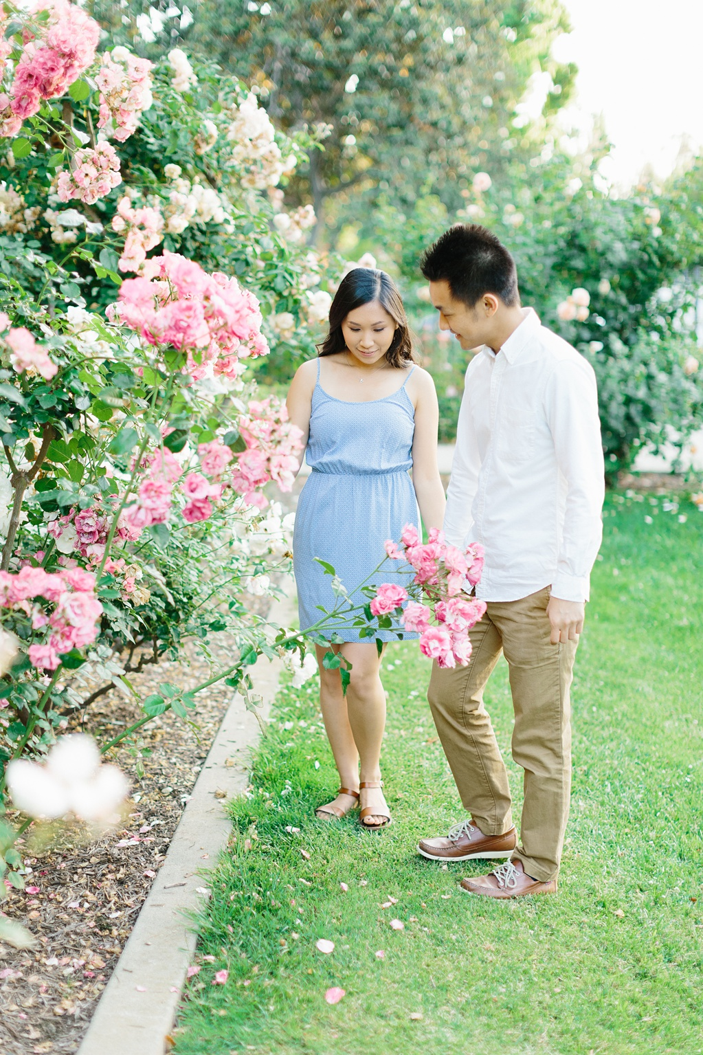 Elegant rose garden engagement shoot at Lacy Park in Pasadena by LA wedding photographer-Madison Ellis Photography (27)