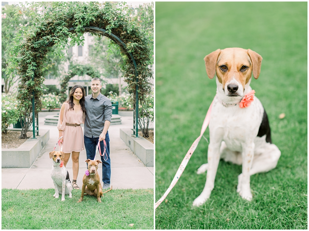 Beautiful at home engagement session in Playa Vista (48)