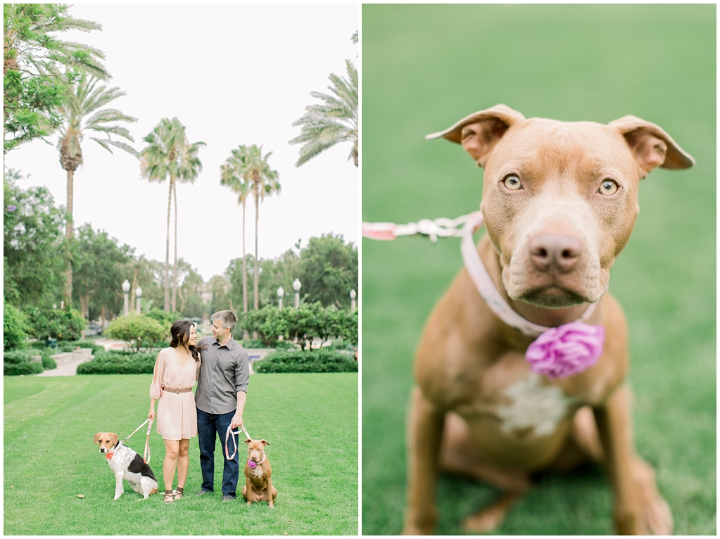 Beautiful at home engagement session in Playa Vista (47)