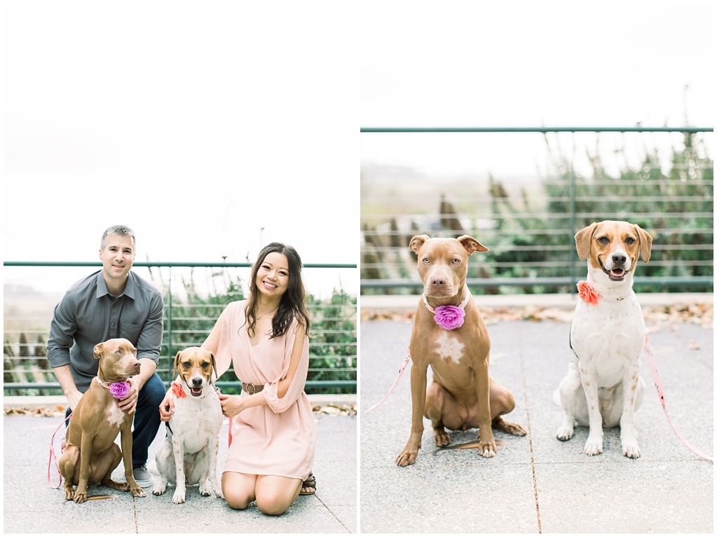 Beautiful at home engagement session in Playa Vista (46)