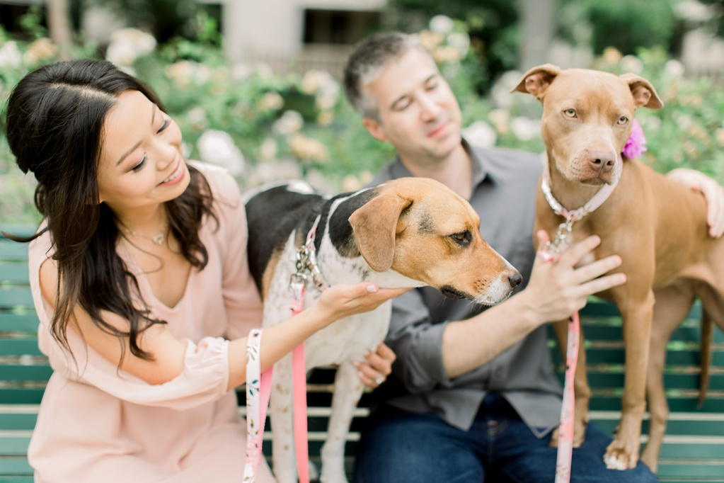 Beautiful at home engagement session in Playa Vista (32)