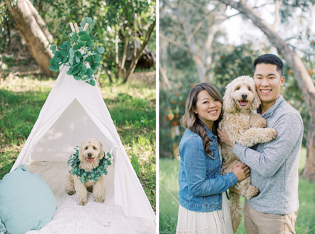 Eucalyptus filled enagement session at Malaga Cove in Palos Verdes By Madison Ellis Photography (36)